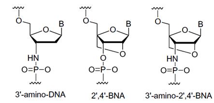 BNANCNME7