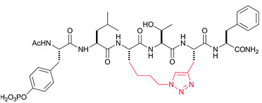 Click Chemitry for peptide cyclization