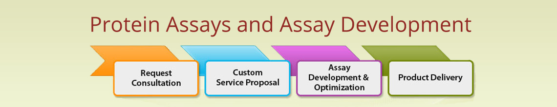 Protein Assays and Assay Development