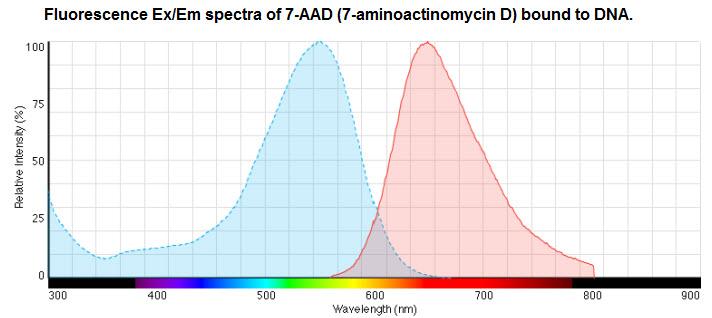 7-aminoactinomycin D (7-AAD) Dye Labeling