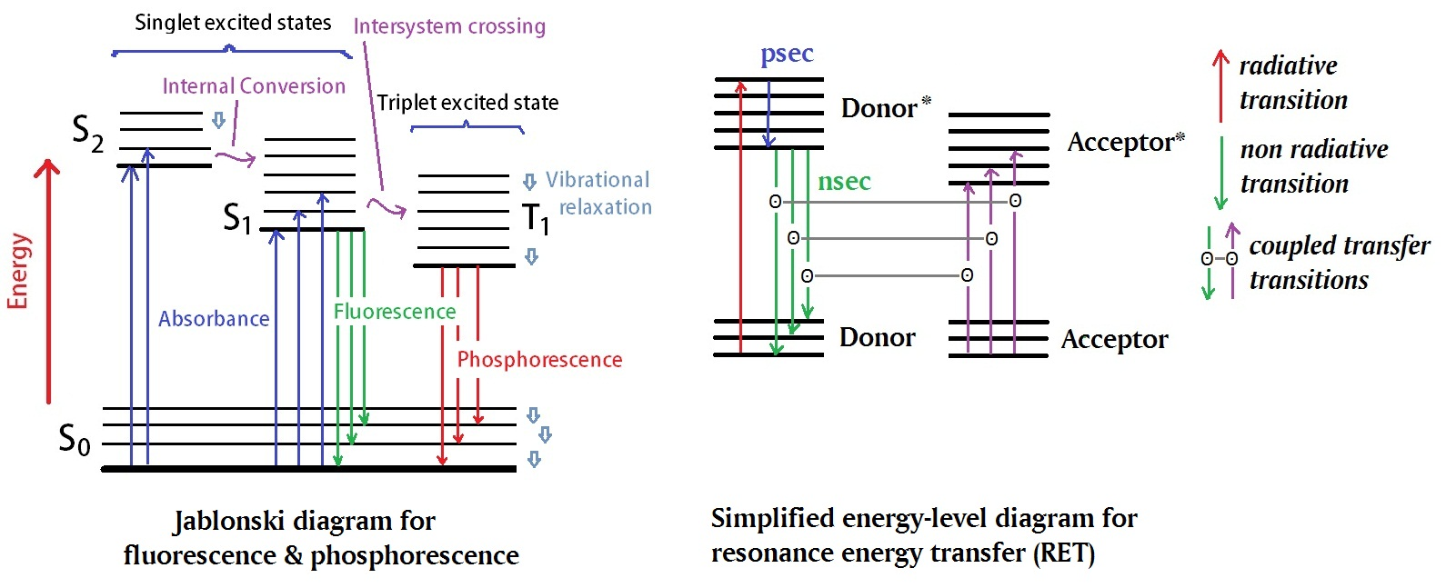 Dual labeled probes figure 1 the classical jablonski diagram shown her in the left panel illustrates electronic states of a molecule as well as photo induced processes ccuart Images