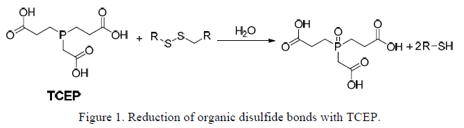 Disulfide Reduction Using Tcep Reaction