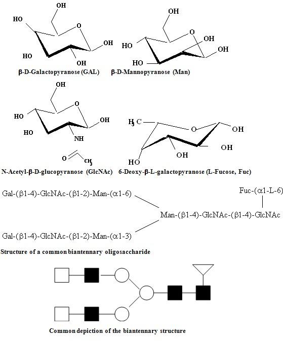D Galactopyranose Mass Spectrometry Anal...