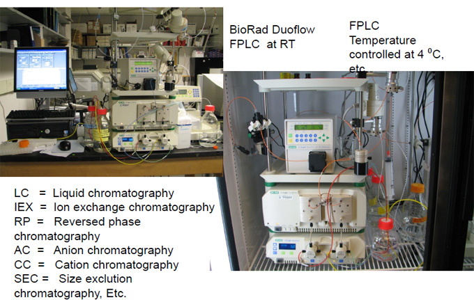 Purification of Biomolecules