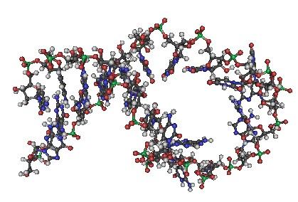 2N82-RNA