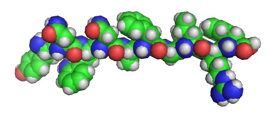 Kisspeptin0-model