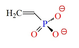 Vinylphosphonate improves siRNA-GalNac conjugates