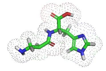 Is Carnosine A Natural Antioxidant