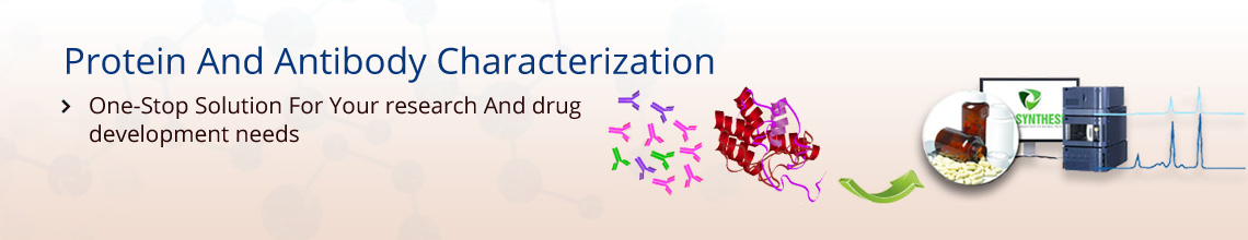 Protein Characterization Services