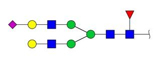 Glycosylated Peptides