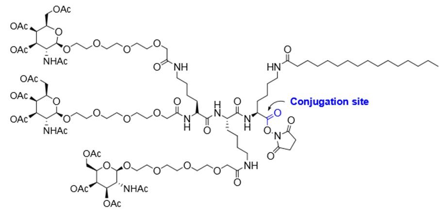Glycosylated Oligonucleotides