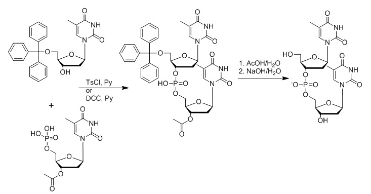 The Chemical Synthesis of Oligonucleotides