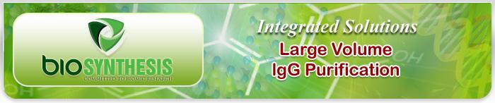 Large Volume IgG Purification